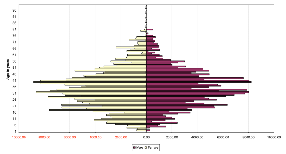 Age and Gender Structure of Black African People Born in the UK 2008